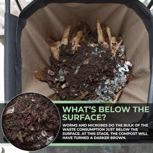 urban worm bag inside