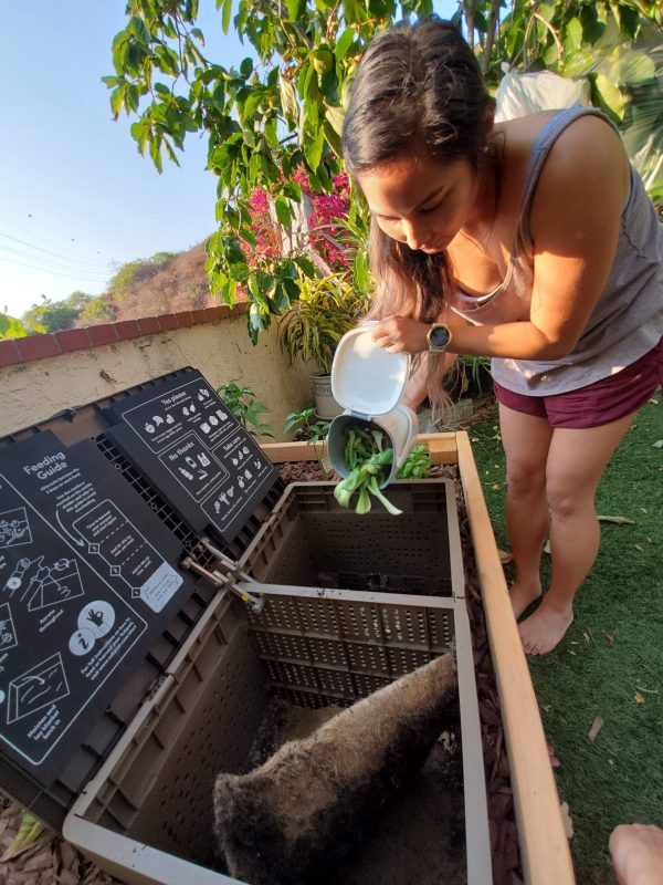 composting with subpod
