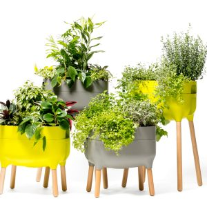 urbalive self watering planter short and tall