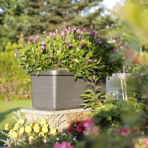 urbalive self watering planter