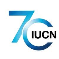 Rapport de l'IUCN – Le renouvellement des enjeux liés à l'huile de palme