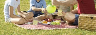Keeping Nature in Mind: Green Picnics