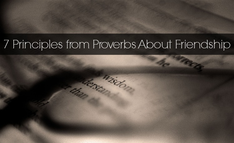 7 Principles From Proverbs About Friendship