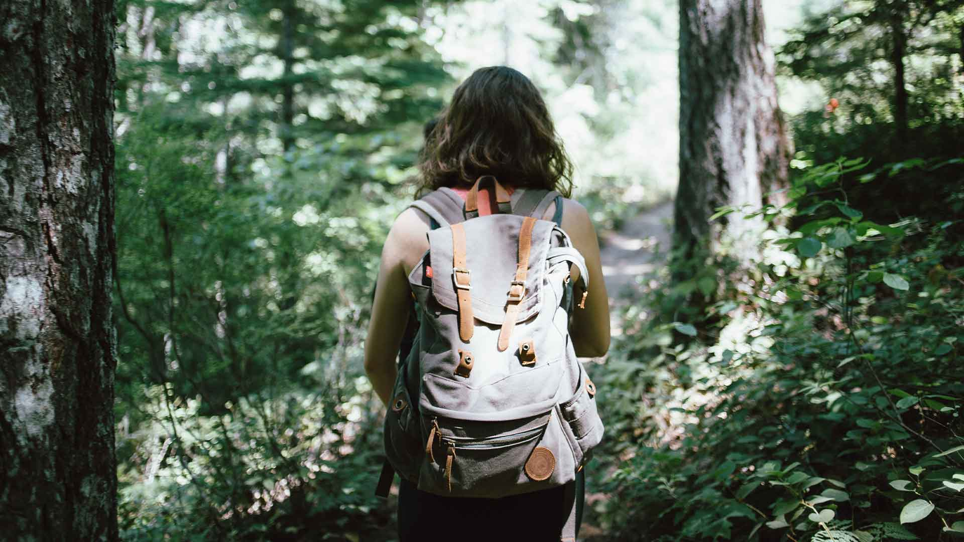 exploring nature on hike