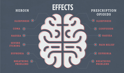 graphic of effects of opiods on the brain