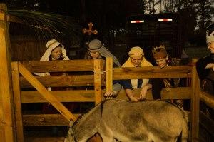 Live Nativity - The Donkey