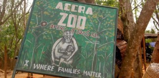 Accra Zoo, Accra Zoo location, Accra Zoo contact numbers, Accra Zoo fees