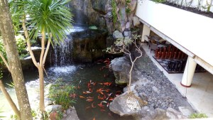 Beautiful waterfall with fishes in the pond