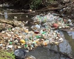 Trash picture
