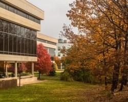 Campus scene in the fall