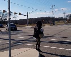 Pedestrian crossing Richmond Highway
