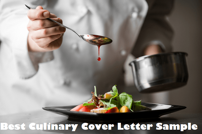 Best Culinary Cover Letter Example Clr