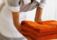 Best Housemaid Resume Sample Banner