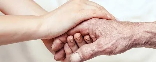 Caregiver Cover Letter Example Clr