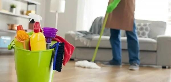 House Cleaner Resume Sample Cleaner Cv Clr