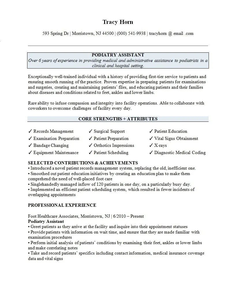 the best resume templates for 2021  clr