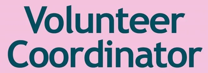 Volunteer Coordinator Resume No Experience Page Image
