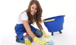 Domestic Maid