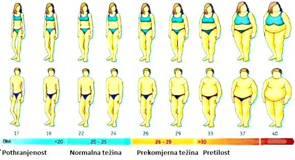 INDEKS TJELESNE MASE (ITM) - BODY MASS INDEX - IDEALNA TJELESNA TEŽINA