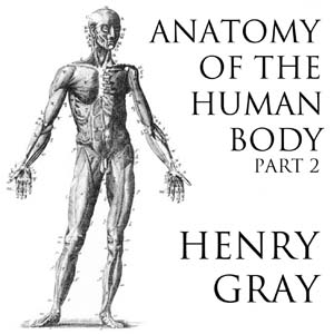 Listen to Anatomy of the Human Body, Part 2 (Gray's
