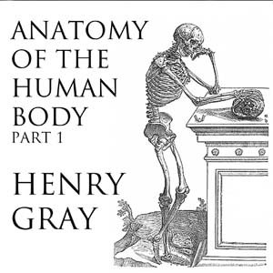 Listen to Anatomy of the Human Body, Part 1 by Henry