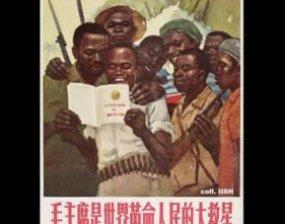 A New World Order? Africa and China