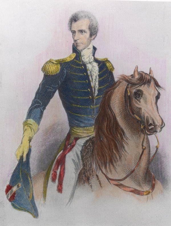 Florida Memory - Engraving of Governor Andrew Jackson on horseback | Seminole  wars, Andrew jackson, Early american