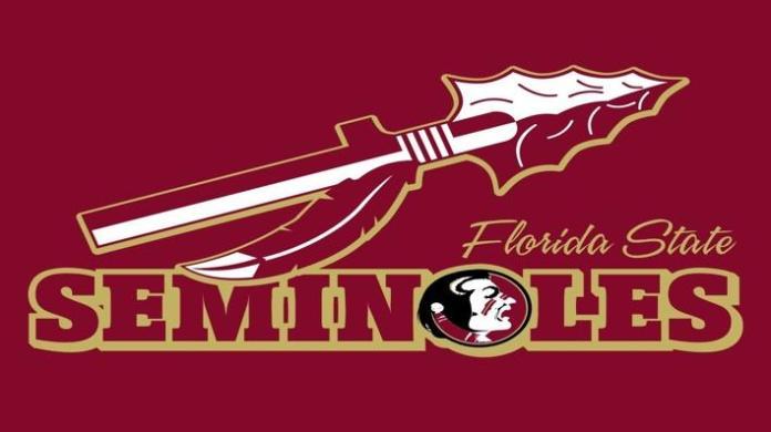 Pin by Chrissy Bassett on >>;;-FSU-;> | Florida state seminoles football, Florida  state seminoles, Florida state football