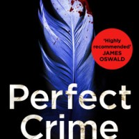Book Review: Perfect Crime by Helen Fields