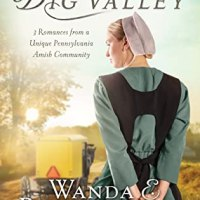 Review: The Return To Big Valley: Wilma's Wish by Wanda Brunstetter