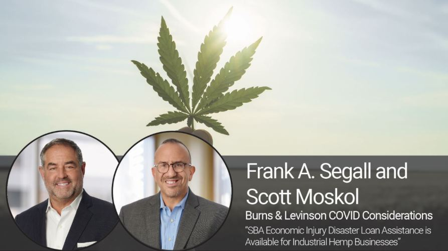 SBA Economic Injury Disaster Loan Assistance is Available for Industrial Hemp Businesses