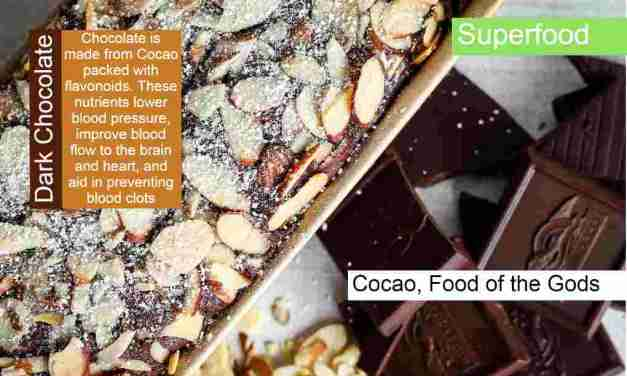 The best Superfoods that Heal and give you amazing benefits?