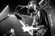 TheWhigs-20150117-18-CovingtonImagery-SM