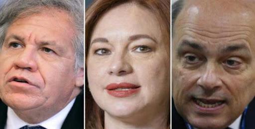Elecciones en la OEA – Por Félix Arellano