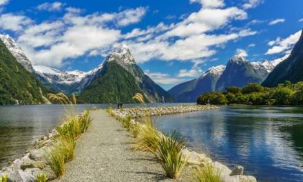 16 Day New Zealand Tour 2020