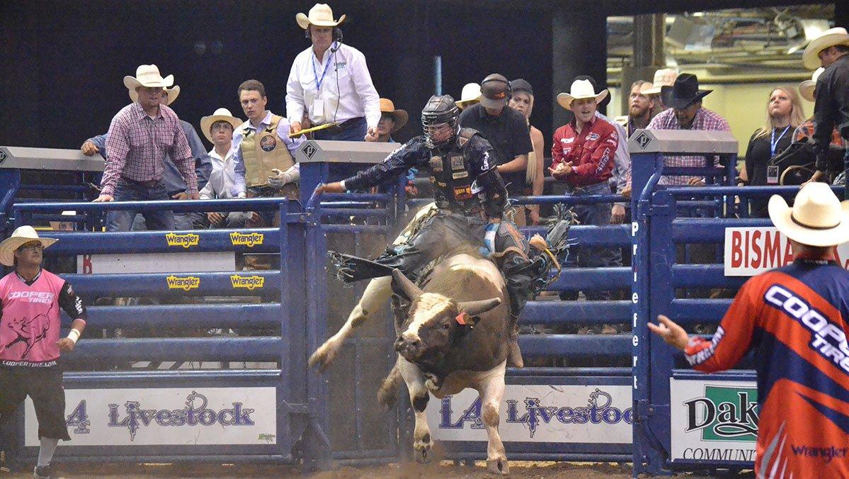 berger bucking bulls presents