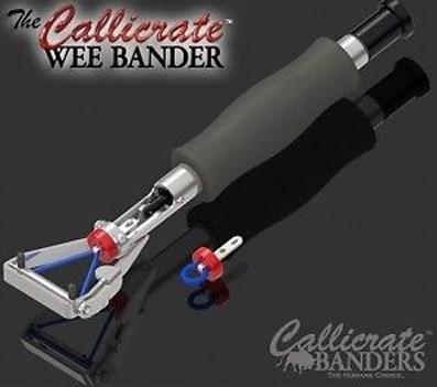 Wee Banders