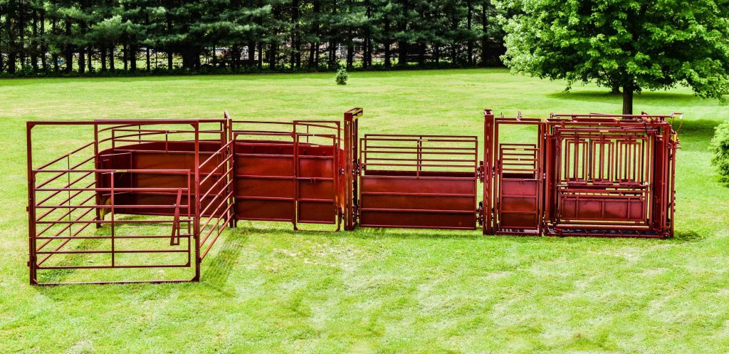 cattle chute system