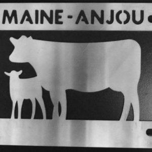 MAINE ANJOU COW/CALF