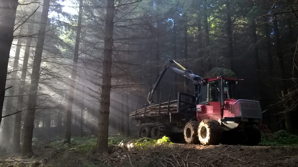 Woods Forwarder Verdley