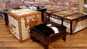 Cowhide-Collection-Storage-Collection