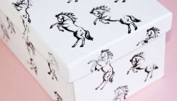 Horse storage boxes