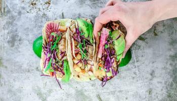 fish taco recipes