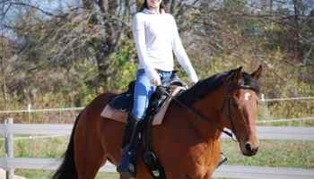 Cowgirl - Seat