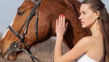 Wedding Horses