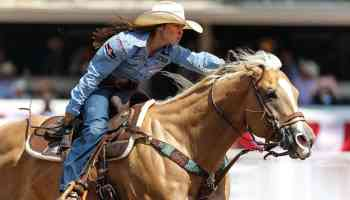 barrel horse breeding cowgirl magazine