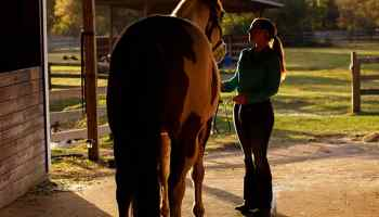 triple crown equimix cowgirl magazine