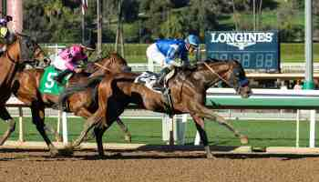 thousand words kentucky derby horse names cowgirl magazine