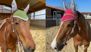 ear bonnet cowgirl magazine
