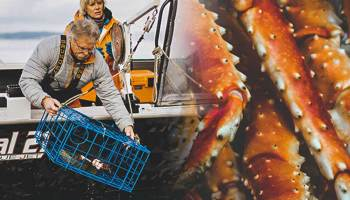 king crab orange yeti cowgirl magazine yeti coolers